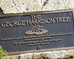 George Harrison e a Dupla Ironia Post Mortem