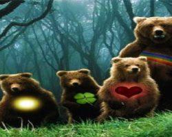 ILUMINEWS – A volta dos Ursinhos Carinhosos!